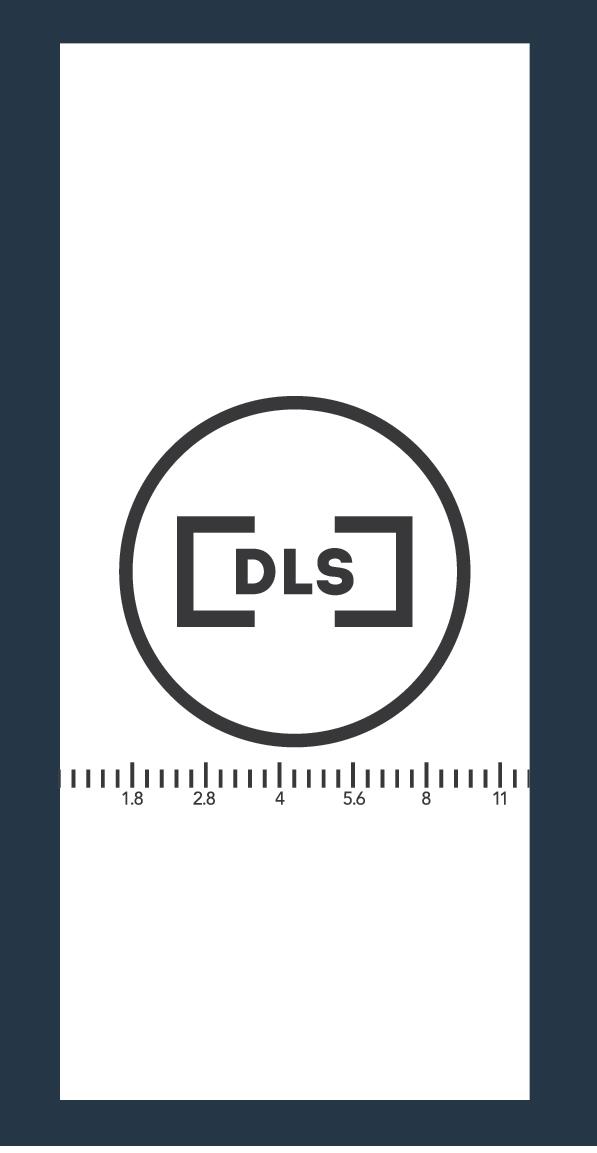 dls_branding-01